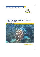 GBR-water-quality-current-issues.pdf.jpg