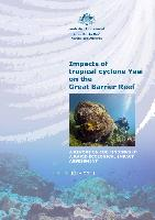 Impacts-Yasi-GBR-rapid-assessment-2011.pdf.jpg