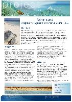 Raine-Island-adaptive-management-conserve-marine-turtles.pdf.jpg
