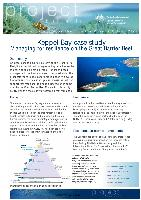 Keppel-Bay-case-study-Managing-for-resilience-on-the-Great-Barrier-Reef.pdf.jpg