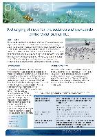 A-changing-climate-for-the-seabirds-and-shorebirds-of-the-Great-Barrier-Reef.pdf.jpg
