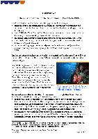 State-of-the-Reef-Report-2006-Overview.pdf.jpg