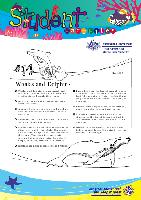 14-whales-and-dolphins-2005.pdf.jpg