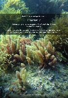 Chapter-7-Vulnerability-of-macroalgae-of-the-Great-Barrier-Reef-to-climate-change.pdf.jpg