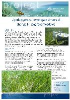 Lightloggers-to-investigate-drivers-of-change-in-seagrass-meadows.pdf.jpg